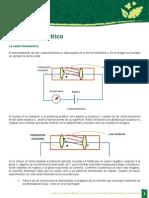 Fis_u4_oa_10 Efecto Fotoelectrico (La Celda Fotoelectrica)