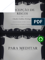 PERCEPÇÃO DE RISCOS  2