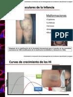 seminariohemangiomasdefinitivo-100206041826-phpapp02