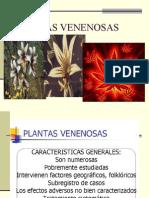 3058050-Plantas-venenosas