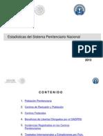 Estadística_Penitenciaria_2013