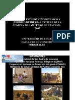 130340 C2 San Pedro de Atacama