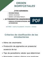 ACTINOMYCETALES