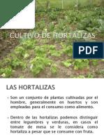 Charla Hortalizas