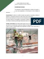 Demolicion Manual