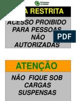 PDF Placas