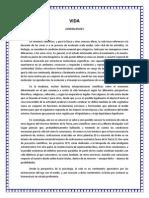 VIDA 2 Generalidades