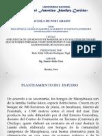 Diapositivas Hongos de Marayhuaca