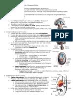 PHo Notes   Embryology 07 - Body Cavity & Respiratory System