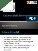 Lesiones Del Lóbulo Occipital