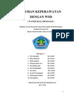 makalah askep WSD