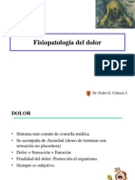 Fisiopatologc3ada Del Dolor