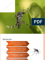 Manifestaciones Dengue