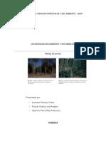 Facultad de Ciencias Forestales y Del Ambiente