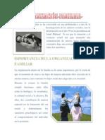 Organizacion de La Familia, Organizacion de La Escuela, Organizacion Escolar y Organizacion de La Sociedad