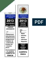 impresión_costilla carpeta_QUITAR y PEGAR