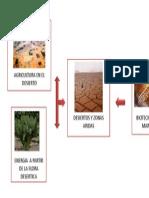Presentación biotech marron