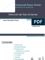 40654484 Infeccion de Vias Urinarias