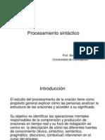 procesamiento_sintactico_2009_4