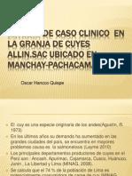 Estudio de Caso Clinico en La Granja (Diapos) Expopptx