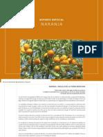 100602 Reporte Naranja