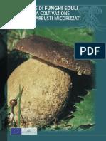 Produzione di funghi eduli
