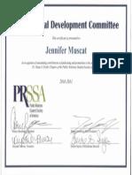 Professional development 1