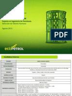 Preselección Experto en Ingeniería de Petróleos