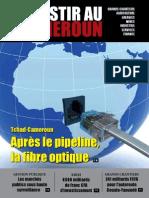 Investir au Cameroun 2.pdf