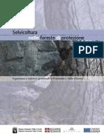Selvicoltura nelle foreste di protezione