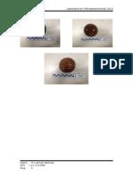 mikroplaeontologi