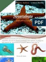 Nevertebrate
