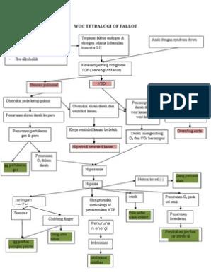 TOF WOC 18,9,2013(1) Pathophysiology Of Tetralogy Fallot Schematic Diagram on nephrotic syndrome pathophysiology, retinopathy of prematurity pathophysiology, typhoid fever pathophysiology, chronic obstructive pulmonary disease pathophysiology, cardiac tamponade pathophysiology, mitral valve stenosis pathophysiology, cushing's syndrome pathophysiology, sarcoidosis pathophysiology, bronchiolitis pathophysiology, mitral valve regurgitation pathophysiology, atrial flutter pathophysiology, ankylosing spondylitis pathophysiology, unstable angina pathophysiology, aspiration pneumonia pathophysiology, cardiogenic shock pathophysiology, umbilical hernia pathophysiology, pleural effusion pathophysiology, meningitis pathophysiology, aortic stenosis pathophysiology, alzheimer's disease pathophysiology,
