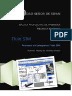 Resumen FluidSIM