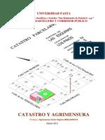 Texto de Catastro y Agrimensura 2013 (Muy Largo)