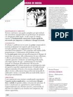 disegnoFigurinomoda.pdf