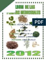 Album de Plantas Medicinales