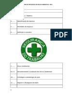 PPRA Procedimentos.doc