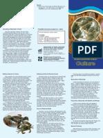 Mudcrab Culture.pdf