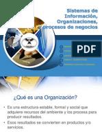 Sistemas de Informacin Organizaciones