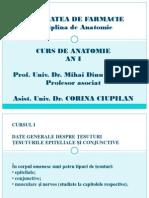 Curs Anatomie