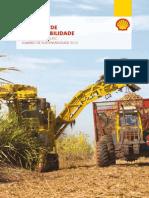 Shell Sumario de Sustentabilidade 2012