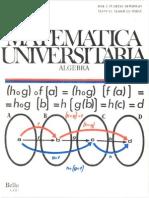 MATEMÁTICAS UNIVERSITARIAS – ALGEBRA -