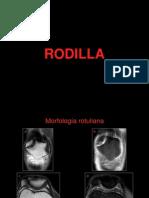 Definitivo Comprimido Rodilla