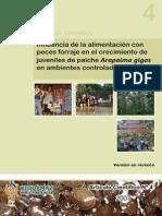 Influencia de la alimentación con peces forraje en el crecimiento del paiche - 28-11-07