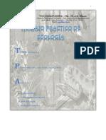 trabajo practico de Ecosistema-grupo 1.docx