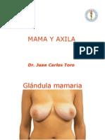 mamayaxila MASTOGRAFIA