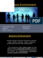 Business Environment (1)