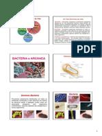 Archaea e Bacteria 2013.1