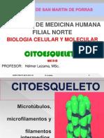 BCM 13 CHI Citoesqueleto
